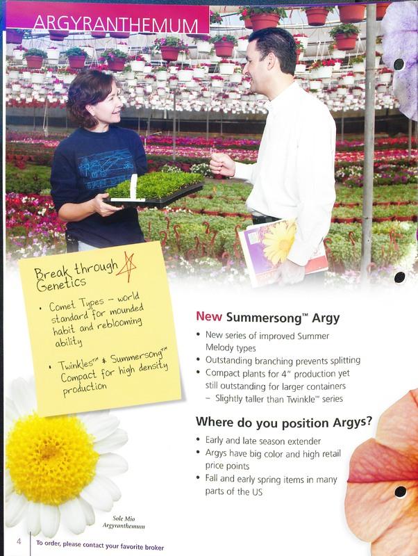 2005_annuals_the_flower_fields_0004.jpg