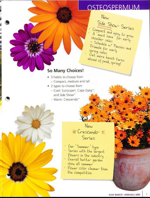 2005_annuals_the_flower_fields_0007.jpg
