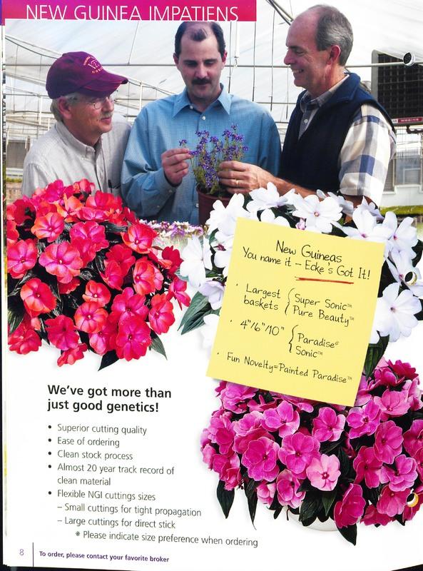 2005_annuals_the_flower_fields_0008.jpg