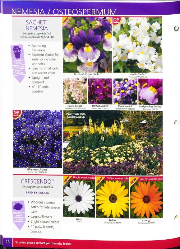 2005_annuals_the_flower_fields_0030.jpg
