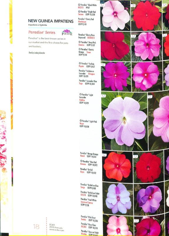Ecke_2010_annuals_0020.jpg