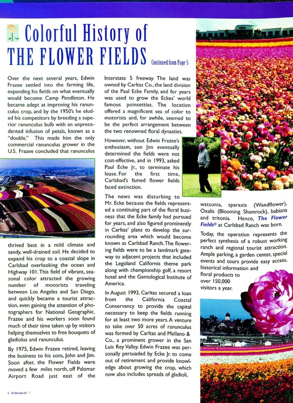 Flower_Fields_Carlsbad_Ranch_0006.jpg
