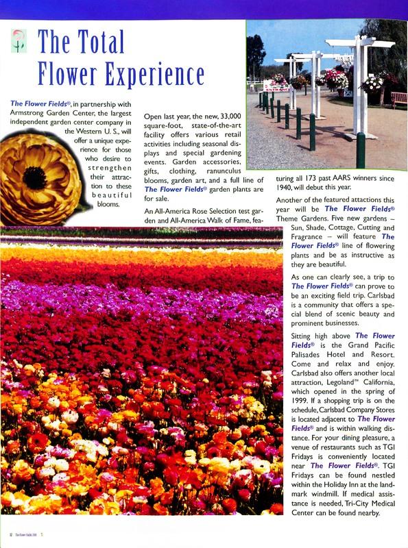 Flower_Fields_Carlsbad_Ranch_0012.jpg