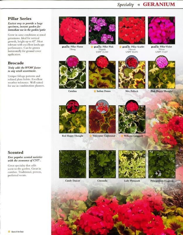 Oglevee_Ecke_better_by_design_0013.jpg