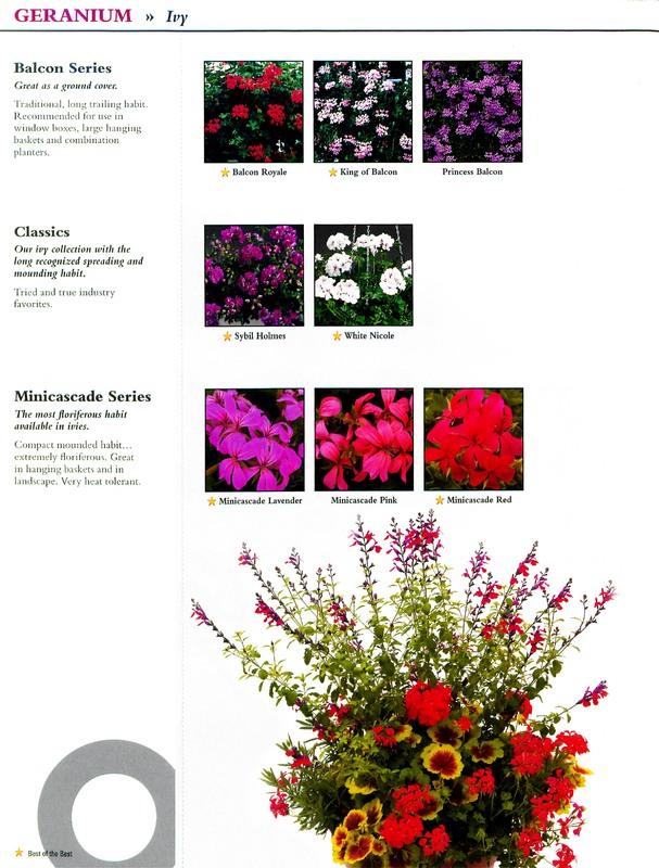Oglevee_Ecke_better_by_design_0014.jpg