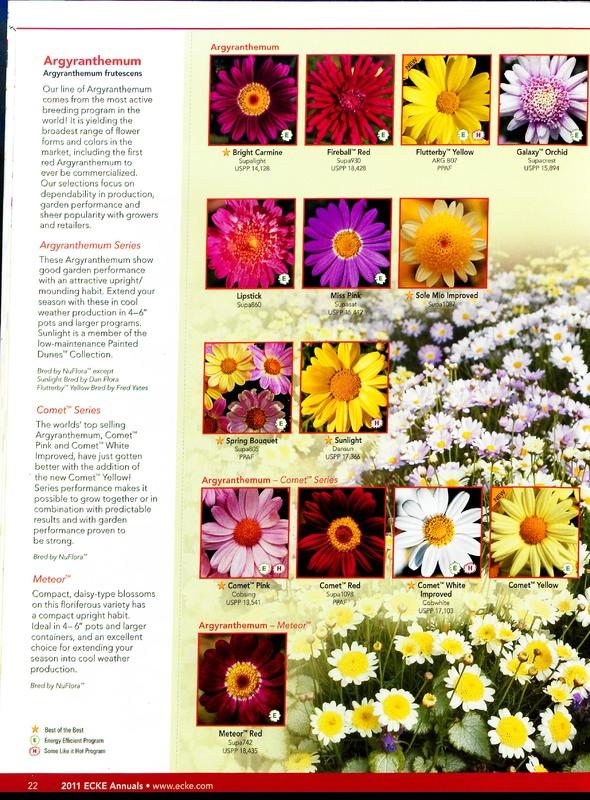 Oglevee_Ecke_better_by_design_0022.jpg