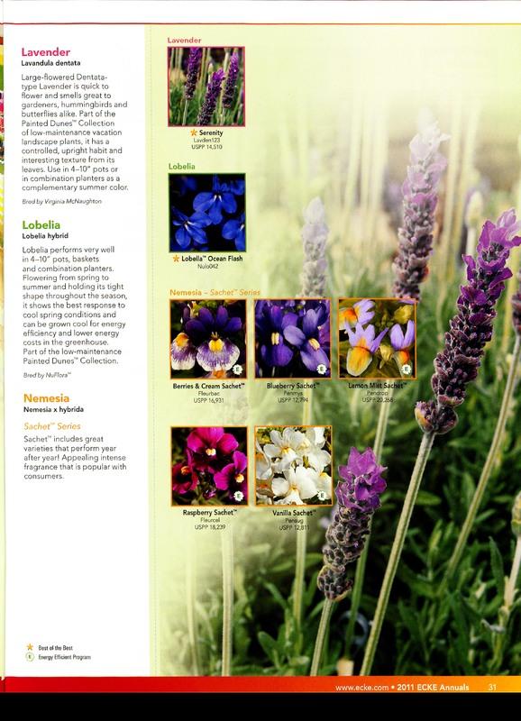 Oglevee_Ecke_better_by_design_0031.jpg