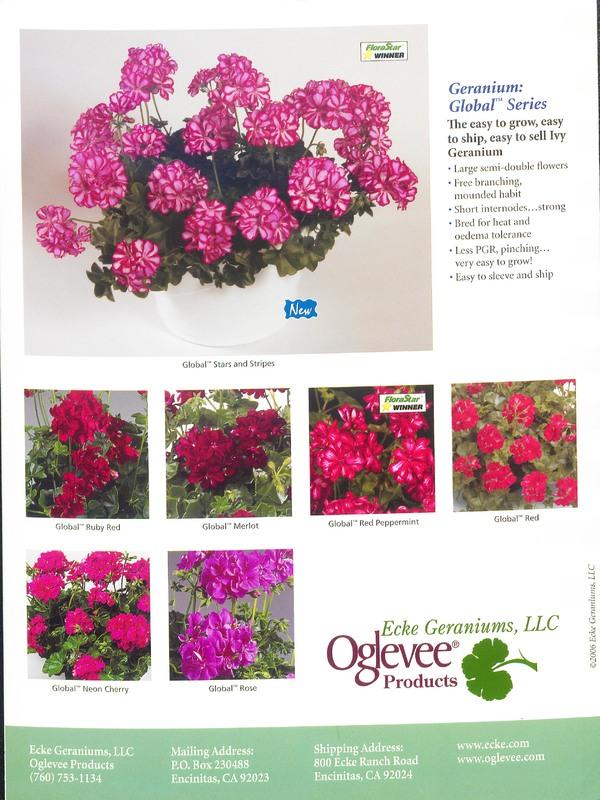 Oglevee_Ecke_catalog_0006.jpg
