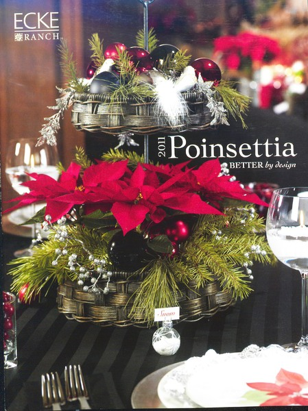 Ecke_Ranch_2011_poinsettia_0001.jpg