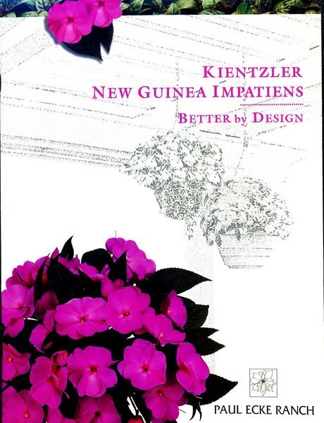 KNGI_Better_by_Design_0001.jpg